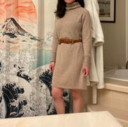 Quince Mongolian Cashmere Turtleneck Dress Review
