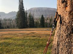 Paria Outdoor Products Tri-Fold Carbon Cork Trekking Poles Review
