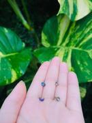 Ouferbodyjewelry 3PCS 18G Nasenringe Sets Mondstern Marmorstein Nasenstecker Bewertung