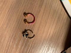 Ouferbodyjewelry 16G HoneyBee Gold Revisión de la joyería del tabique con segmento con bisagras