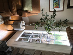 RusticReach Artificial Olive Tree Review