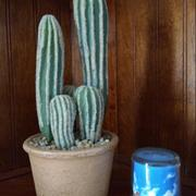 RusticReach Artificial Cactus in Brown Pot Review