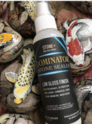 Black Diamond Coatings DOMINATOR STONE+ GLOSS - Wet Look Satin Finish Stone Sealer and Clay Brick Sealer Review