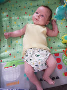 My Little Gumnut Modern Cloth Nappy - Mint Review