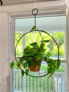 Afloral.com Metal and Terracotta Plant Hanger with Pot - 6.25 Wide Review