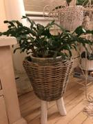 Afloral.com Wicker Basket Plant Stand - 17.25 Tall Review