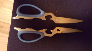 JapaneseChefsKnife.Com SILKY Kitchen Shears VIP (Versatile & Important & Professional) Review