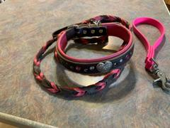 Sexy Beast Dog Collars Neck Size Review