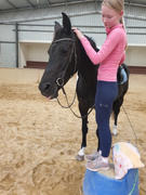 Equestrian Collective Honeycomb Technical Tights: Navy Review