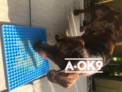 A-OK9 K9-CALM MAT: 3 Pack Review