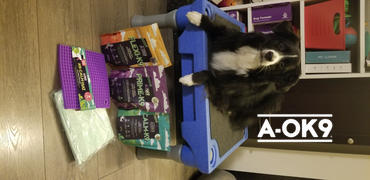 A-OK9 K9 Wellness Box Review