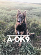A-OK9 Rescue-K9: Pack of 10 Sachets Review