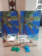 American Cornhole Association Star Hammock On The Beach Tropical Professional Cornhole Boards Review