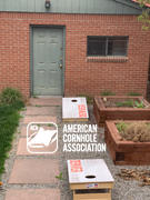 American Cornhole Association Denver Vintage Gameday Regulation Cornhole Boards Bag Toss Game Set Review