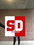 SprayDesigned Tilt Sentry Stunt Scooter Bar Bewertung