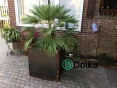 Jardinière en acier Corten Doika Adezz Andes 70x70x70 cm Critique