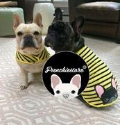 قميص فرنشيستوري فرنشي | frenchiestore | كريم البلدغ الفرنسي في مراجعة Bumblebee