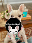 Frenchiestore Frenchiestore Reversible Dog Health Harness | UniPup Review
