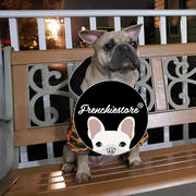 Frenchiestore French Bulldog Hoodie | Frenchie Kleidung | Senf Ultimate Camo Bewertung