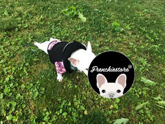 هودي Frenchiestore French Bulldog باللون الوردي | ملابس فرينشي | استعراض الكلب الأسود الفرنسي