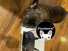 Frenchiestore Frenchie Aufkleber | Frenchiestore | Black Brindle French Bulldog Auto Aufkleber Bewertung