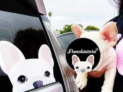Frenchiestore Frenchie Aufkleber   Frenchiestore   Weiße französische Bulldogge Auto Aufkleber Bewertung