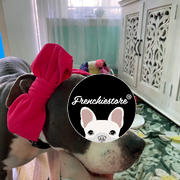 Frenchiestore Frenchiestore Pet Head Bow | Army Green Review