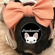 Frenchiestore French Bulldog Hoodie in Grau | Frenchie Kleidung | Blue Frenchie Hund Bewertung