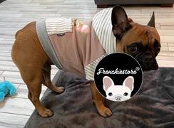 هودي البلدغ الفرنسي Frenchiestore باللون الرمادي | ملابس فرينشي | Fawn Frenchie مراجعة الكلب