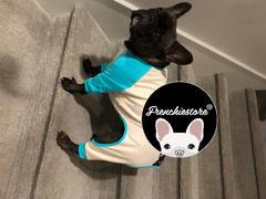 Frenchiestore Французский бульдог Пижама в цвете Aqua | Frenchie Одежда | Черная французская собака Обзор