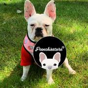 Frenchiestore Двусторонняя повязка для здоровья собак Frenchiestore | Frenchie Love Обзор
