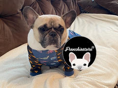 Pyjama Bouledogue Français Frenchiestore en Aqua | Vêtements Frenchie | Examen du chien Fawn Frenchie
