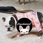 Frenchiestore French Bulldog Pajamas in Aqua | Frenchie Clothing | Fawn Frenchie Dog Review