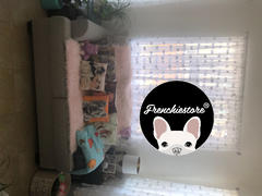 Manta Frenchiestore Frenchie | Bulldogs franceses de muy buen gusto en Aqua Review