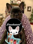Frenchiestore Frenchiestore تسخير صحة الكلب العكسي | مراجعة الآيس كريم