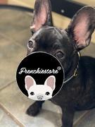Frenchiestore Frenchiestore Breakaway Hundehalsband | Pink Varsity Bewertung