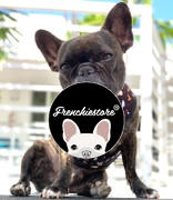 Frenchiestore Pettorina reversibile per la salute del cane Frenchiestore | Recensione di Harry Pupper
