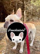 Frenchiestore Frenchiestore Hund Luxus Leine | Lips & Roses Bewertung