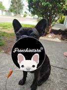 Frenchiestore Frenchiestore Breakaway Hundehalsband | 101 Dalmatiner Rezension