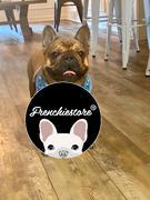 Frenchiestore Pettorina reversibile per la salute del cane Frenchiestore | The Child Review