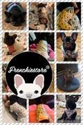 Frenchiestore Двусторонняя повязка для здоровья собак Frenchiestore | Гарри Пуппер Обзор