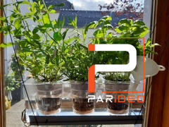 PARIDEO Pot à plantes, CUBE TRIPLE Review