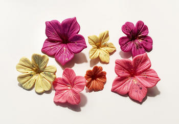 Blossom Sugar Art Petunia Fondant Flowers Cutter and Mould Multi Set Review