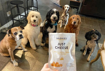 Nashies Freeze-Dried Cheese Dog Treats Review