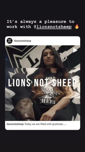 Lions Not Sheep LIONS NOT SHEEP RIFLE Women's Tee Review