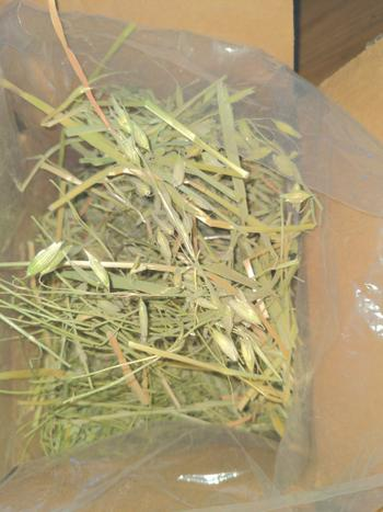 KMS Hayloft Organic Oat Hay Review
