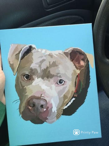 Printy Paw Custom Pet Canvas Review