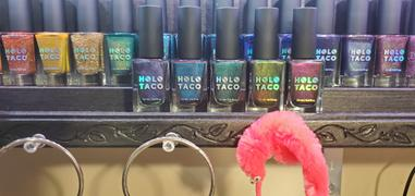 Holo Taco Cats' Evasion Review