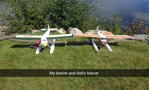 Motion RC Dynam DHC-2 Beaver 1500mm (59) Wingspan - PNP Review