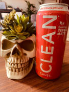 CLEAN Cause Watermelon Mint Organic Sparkling Yerba Mate Review